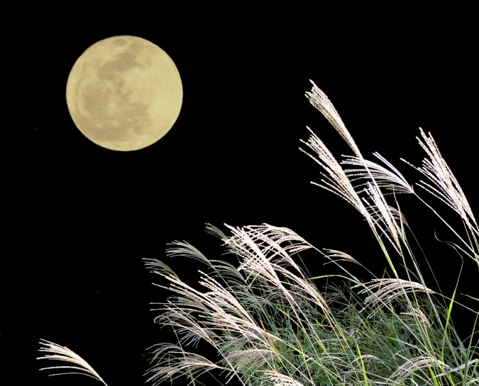 満月の夜に~お月見はいかがでしょうか?