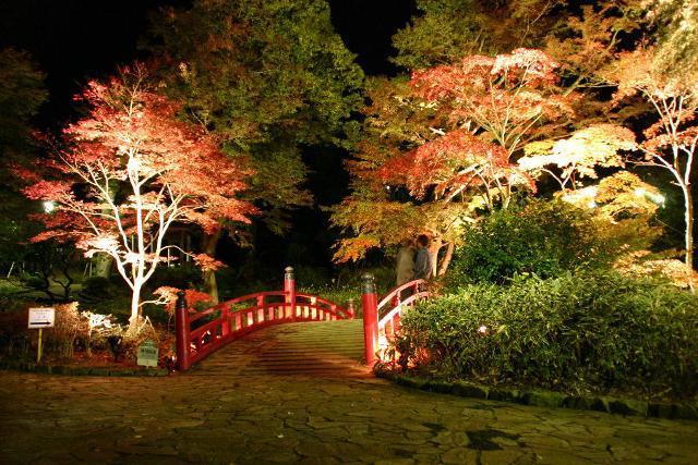 熱海梅園 紅葉 ライトアップ