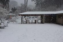 ホワイトバレンタインデー★雪の梅園と満開のあたみ桜
