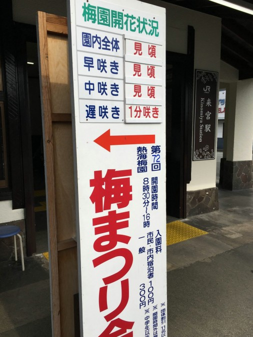 2/6(土) 熱海梅園 今日の開花状況