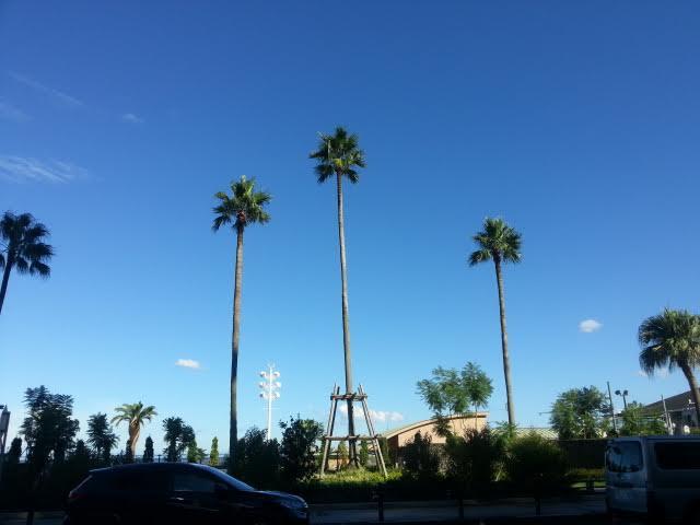 カリフォルニアの青い空・・・・ではなくて熱海温泉です。