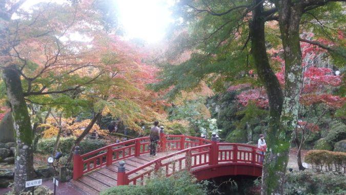 11月22日(火)熱海梅園もみじまつりの会場に行ってきました。
