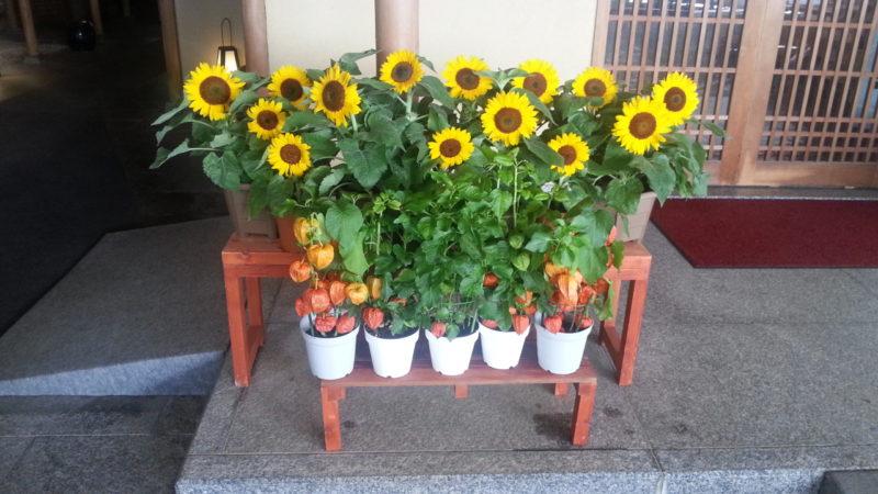 玄関には、「向日葵」