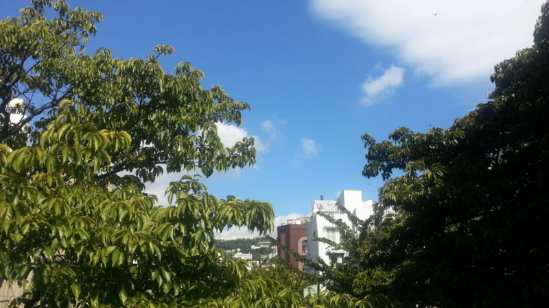 朝から『ピーカン!』『カンカン照り』の熱海温泉(8月10日)