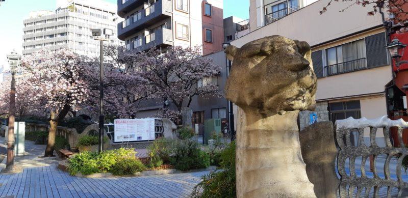 熱海の春の、おもひでづくり~『あたみ桜 糸川桜まつり』1月29日(火)