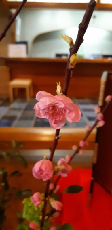『桃の節句』